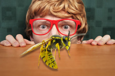 Are you a valuable advertiser or a media pest?